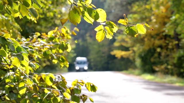 Mini-van fahren auf einer Straße in den herbstlichen Wald.