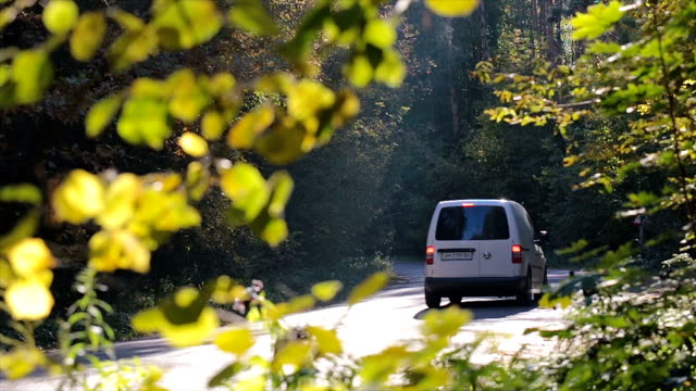 Minivan drives along the forest road.