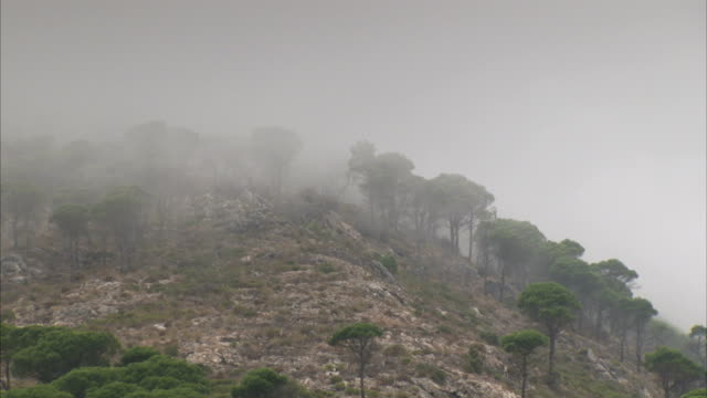 Mist floats through the countryside near Mijas, Spain.