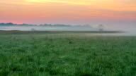 T/L Mist Over A Meadow In The Sunrise