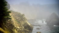 Misty Waves - T/L