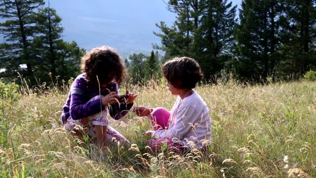 Mixed race girls explore in mountain meadow