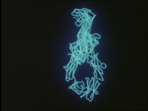 CGI - modeling of antibody + antigen molecules / AIDS the Virus