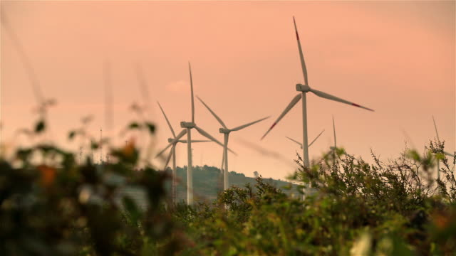 Modern wind-powered turbines rotate in the Honduran countryside