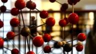 DNA molecuul model in biologie lab test