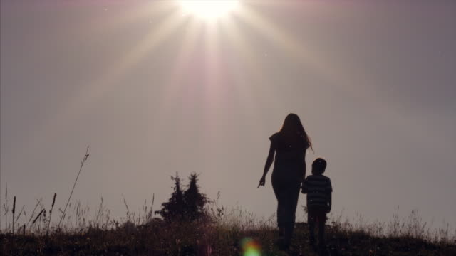Mom and son, holding hands, walking through alpine meadow