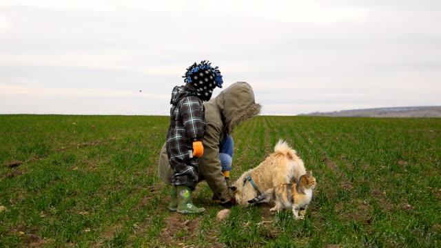 Mutter mit Sohn spielen mit Hund