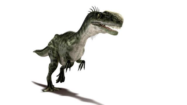 Monolophosaurus dinosaur walking