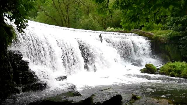 Monsal Head Weir, Peak District National Park