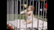 A montage of a baby in a crib outdoors on a sunny day.