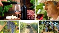Ciclo HD montaggio: vino e sfondi