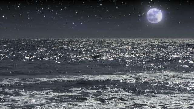 Moonlight illuminates midnight waves.