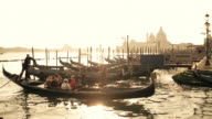 Moored gondolas at sunset, Venice, Veneto, Italy
