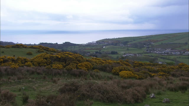 Moors and hills near Cushendun, County Antrim, Northern Ireland, Northern Ireland