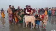 More than 500000 Hindu pilgrims and sadhus holy men are expected to gather at the confluence of the River Ganges and the Bay of Bengal during the...