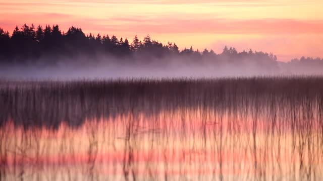 Morgen Nebel am lake bannwaldsee, Bayern, Deutschland