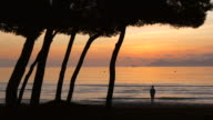 Morning mood at the beach, Playa Muro, Port d'Alcudia, Majorca, Balearic Islands, Spain