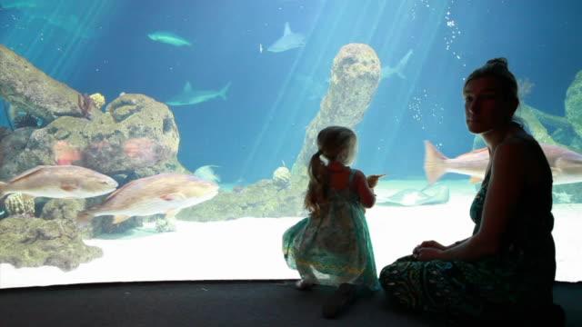 WS PAN Mother and daughter (2-3) at aquarium / Albuquerque, New Mexico, USA