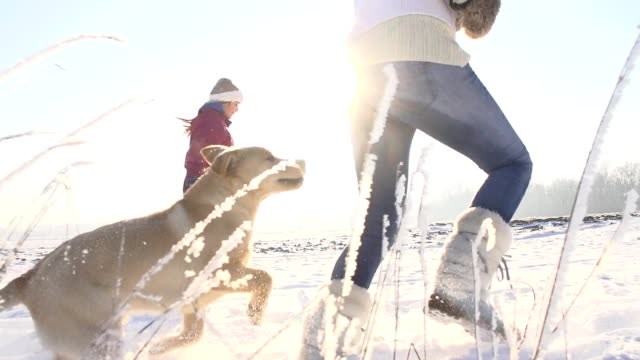 SLO MO Mother And Daughter Running With Puppy In Snow