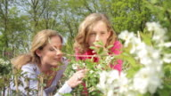 Mother and daughter (11) smelling plants in garden centre