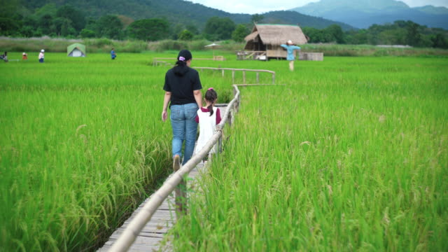 Mother and daughter walking in the rice paddy field