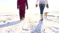SLO, MO, Mutter und Tochter zu Fuß Hund im Winter