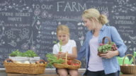 Mother and Daughter Working at Farm Stand