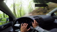 Motion footage of a guy driving car from personal perspective in a mountain road through a beech forest in springtime snowing during a mountain trip.