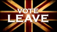 VOTE LEAVE Motion Graphic