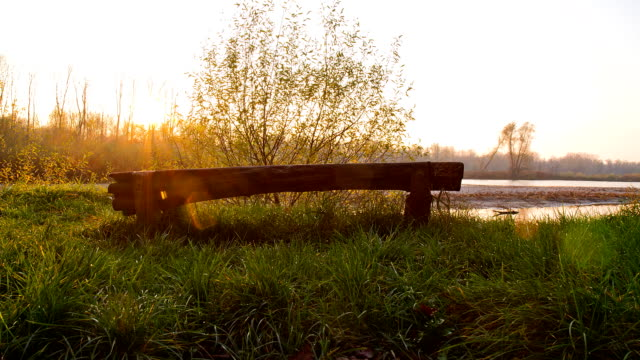 HD Motion Time-Lapse: Bench At The River