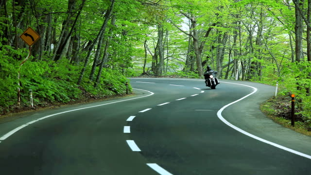 Motorcyclist driving along a winding road in the forest