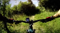 Mountain bicycle in group: wild nature in Tuscany