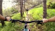 Mountainbike-Videos: Single Track im Wald