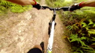 Mountain Bike POV