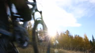 Mountain biker cyles through meadow into autumn forest, sunrise
