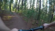 Mountainbiker reitet auf einem schnellen Waldweg