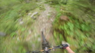 POV of mountain biker riding downhill trail