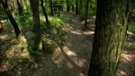 HD: Mountain Bikers Downhill