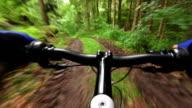 Andare in Mountain bike attraverso la foresta verde TL POV