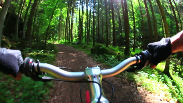 HD in Mountain bike attraverso la foresta di primavera
