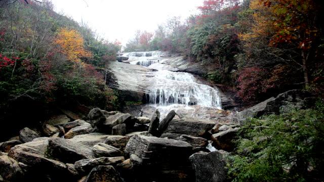 Mountain stream in Appalachians