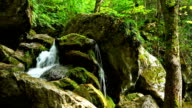 Mountain stream with falling water