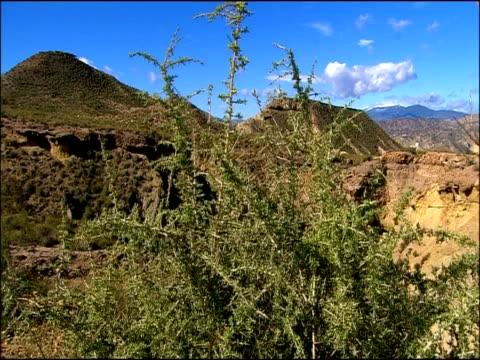 Mountainous scenic, Tabernas, Almeria, Andalucia, Spain