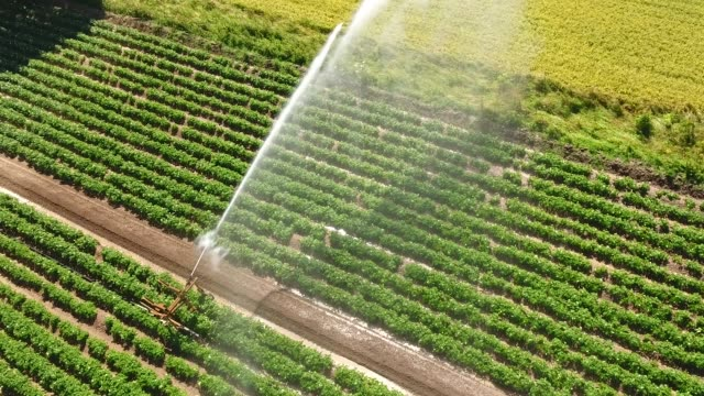 Moving away high viewpoint of a crop sprinkler.