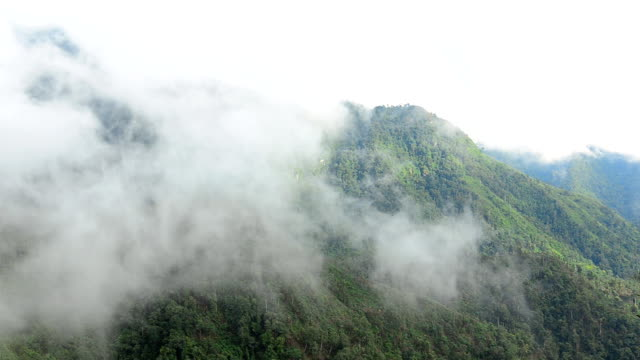 Moving Mist over  Mountains in rainy seasons