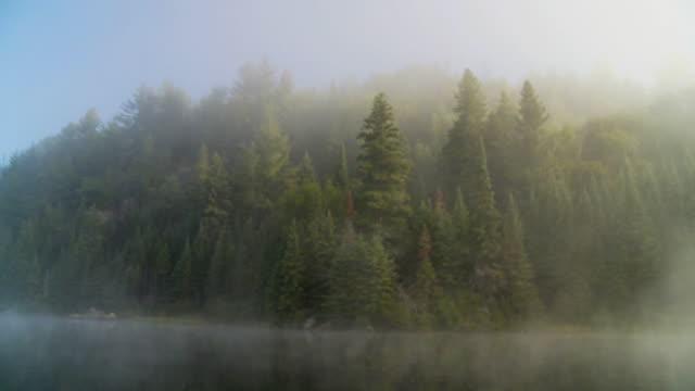 SLO MO POV Moving on lake misty at sunrise, Algonquin Park / Whitney, Ontario, Canada