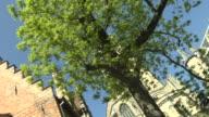 Moving Shot Leie Riverside Shots Bruges West Flanders Belgium