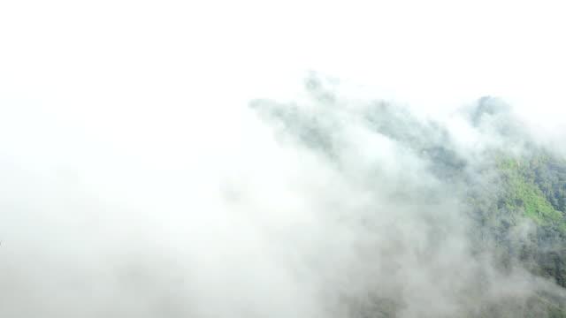 Bewegende witte mist over bergen