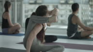 MS_Woman doing stretching exercises in yoga class, in rooftop studio