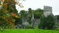 Muckross Abbey In Killarney National Park
